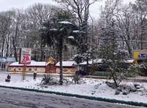 Оголенная гордость парка Победы заставила ставропольчан поволноваться