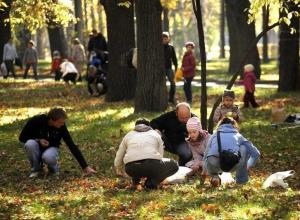 Миллион реликтовых желудей все желающие соберут в центральном парке Ставрополя