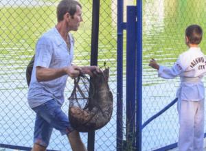 Гигантскую рыбу из Комсомольского озера вытащил житель Ставрополя