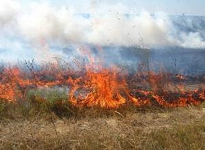 Летнее пекло в ближайшие два дня накроет 11 районов Ставропольского края