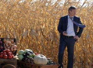 Более 500 миллионов рублей потратят на поддержку предпринимательства в Ставропольском крае