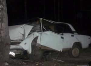 Водитель «семерки» врезался в дерево при обгоне на ночной трассе в Ставропольском крае, - пострадал он и его мать