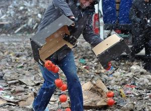 Запрещенные помидоры продавал с «Мерседеса» мужчина в Пятигорске