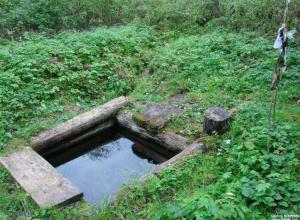 Садоводы поливали участки водой из святого источника