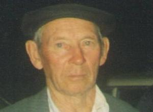 Страдающий провалами в памяти дедушка таинственно исчез на Ставрополье
