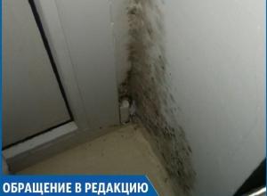 В нашем доме температура опускалась до +14 градусов во время морозов, - жительница Железноводска