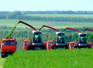 Почти 7 млрд рублей выделили на развитие сельского хозяйства Ставрополья