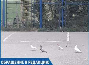 «Детям теперь негде играть»: в одном из дворов Ставрополя женщина вырезала футбольные ворота