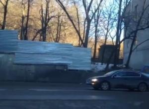 В Кисловодске год экологии начинают с вырубки деревьев