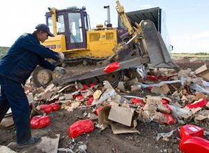 150 килограмм европейских сыров раздавили трактором в Минводах