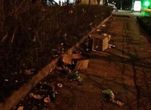 «Сил терпеть это больше нет!» - жительница Ставрополя пожаловалась на кучи мусора на центральной улице
