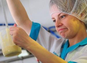 Более двух тонн некачественной «молочки» не пустили на прилавки в Ставропольском крае