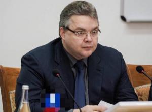 Общественники назвали поправки губернатора Ставрополья в закон «жирных котов» весенним обострением
