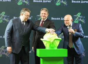 Первую в России рукколу будут выращивать на Ставрополье роботы