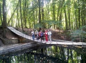 Ставропольские пруды и леса объединят в Эммануэлевскую природоохранную зону