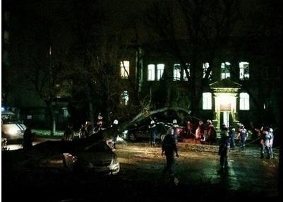 Движение по улице Морозова перекрыто: огромное дерево упало прямо на проезжую часть