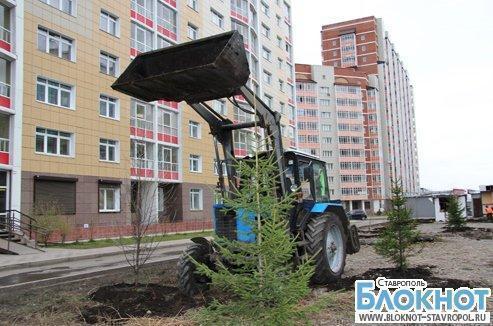 Весной в Ставрополе посадят тысячи деревьев