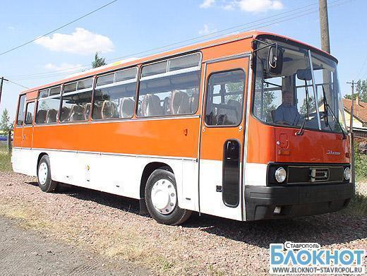 Рейсовый автобус из Махачкалы сбил пешехода насмерть на Ставрополье