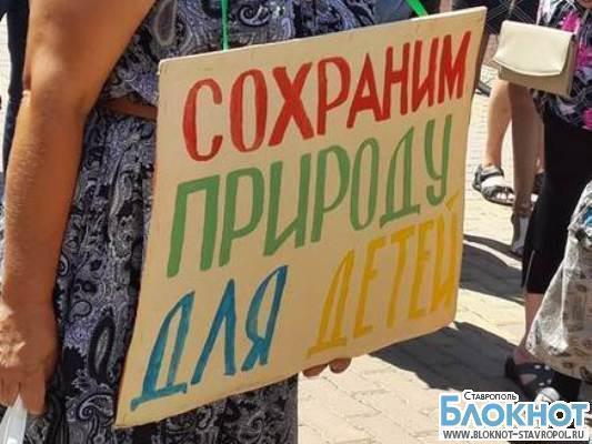 В Ставрополе прошел второй митинг против вырубки деревьев в Таманском лесу