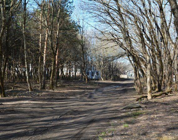 В Таманском лесу Ставрополя убрали незаконные гаражи