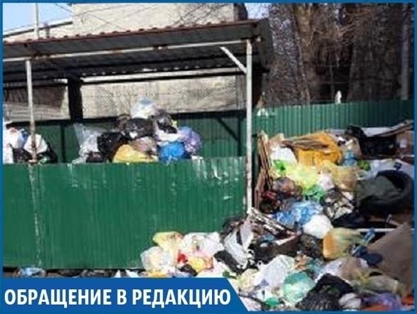 Переполненные мусорные контейнеры во дворе жилого дома возмутили жителей Ставрополя