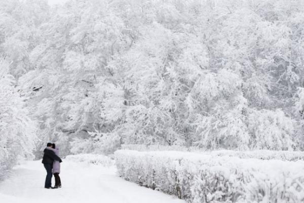 Сильный снегопад засыплет Ставрополье к вечеру вторника