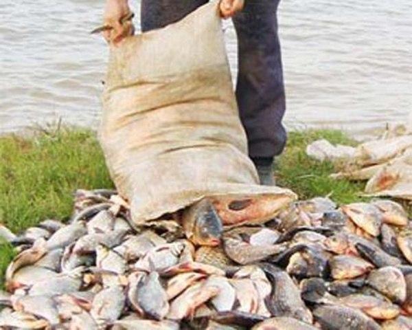 ресурсы для рыболовов