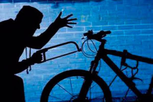 Вессентукском парке мошенники взяли прокатиться велосипеды… на 5 лет