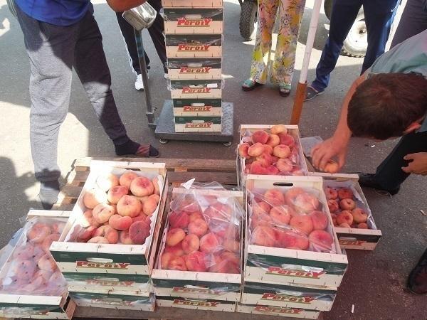 Санкционные персики отправили впечь мусоросжигательного завода Пятигорска