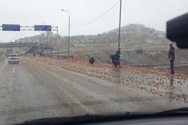 Рассыпанные на трассе Ставрополья яблоки собирали водители
