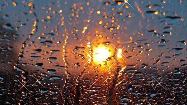 Четверг в Ставрополе будет теплым и дождливым