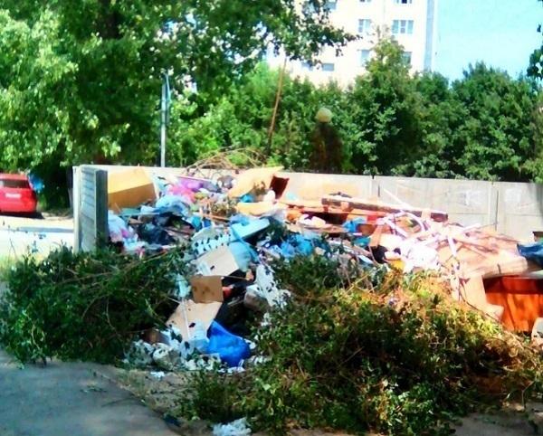 Складировать мусор у порога администрации предложил ставропольский общественник для привлечения внимания чиновников
