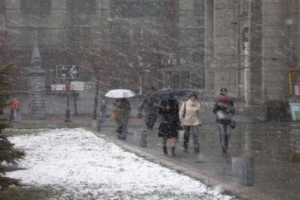 Понижение температуры, дождь иснег— Погода наСтаврополье