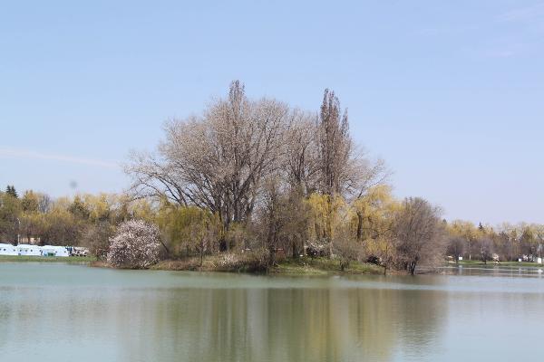 ВЕссентуках вгородском озере потонул таксист