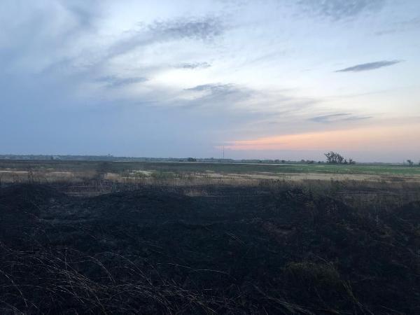 Пожар на ячменном поле в Ставропольского крае обошелся без жертв