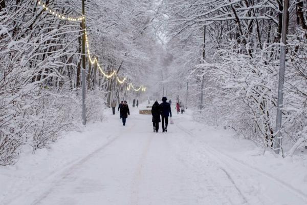 Облачно будет на Ставрополье в последнее воскресенье уходящего года