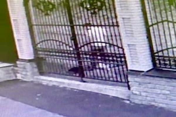 На Ставрополье мужчина избил сожительницу до смерти
