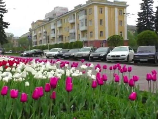 Тепло до +16 градусов ждет жителей Ставрополя на выходных