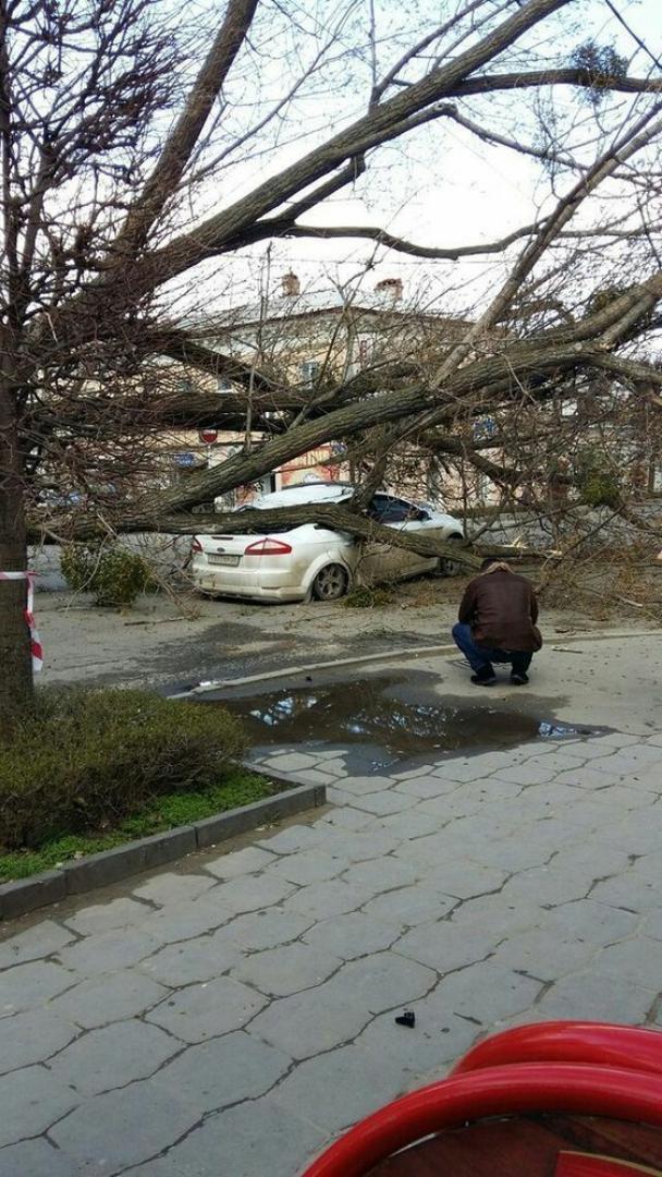 МЕТЕОНОВА - погода в Ставрополе, прогноз погоды в