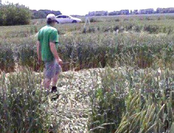 Таинственные криптограммы нашел педагог изСтаврополя вростовском поле