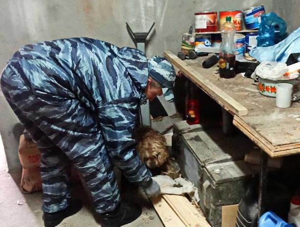 Лавочка закрыта: полиция ликвидировала наркопритон в Курском районе Ставрополья