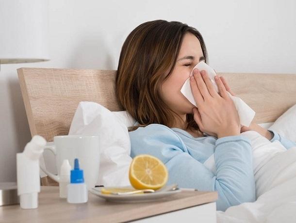 «Дженерики»: как сэкономить на лекарствах в сезон простуд ставропольцам