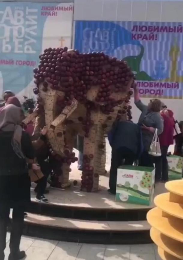 В Ставрополе освежевали «яблочного слона»