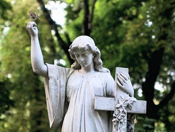 Новое городское кладбище появилось вСтаврополе