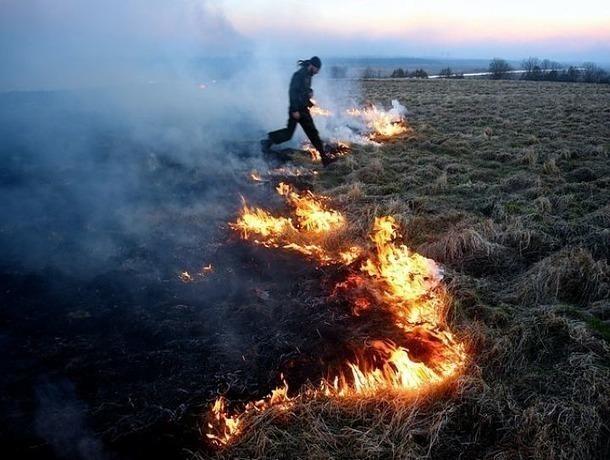 Экстренное предупреждение попожароопасности объявлено наСтаврополье
