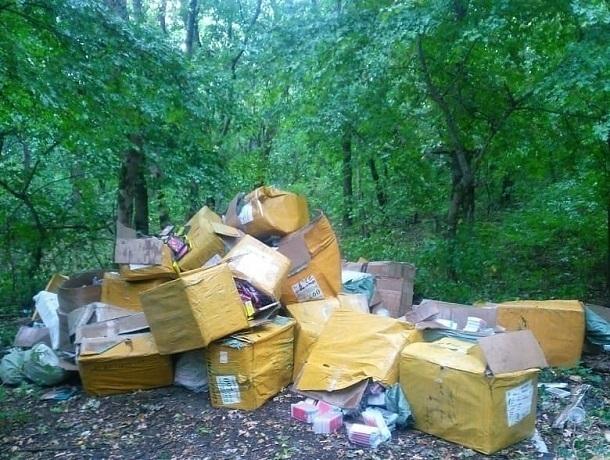 Партию новых чехлов для телефонов обнаружила в лесу жительница Пятигорска