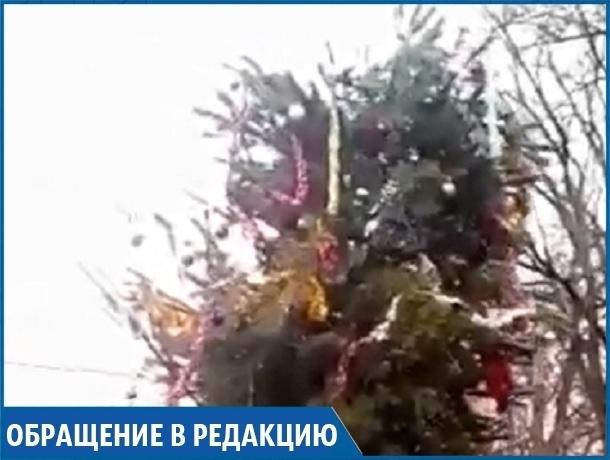«Жесть и позор», - ставропольчанин о елке в своем селе