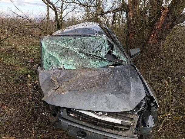 Пьяный водитель «Гранты» врезался в дерево и сломал ногу на Ставрополье
