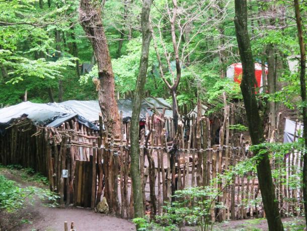 Где в Ставрополе живут эльфы?