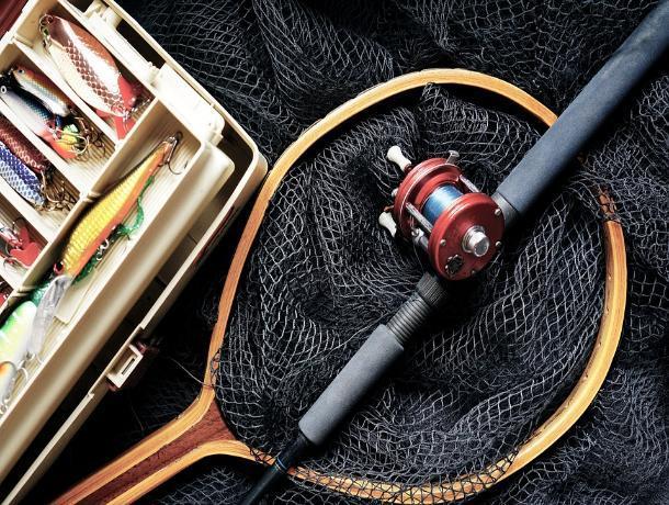 На Ставрополье удачная рыбалка закончилась для мужчины уголовным сроком
